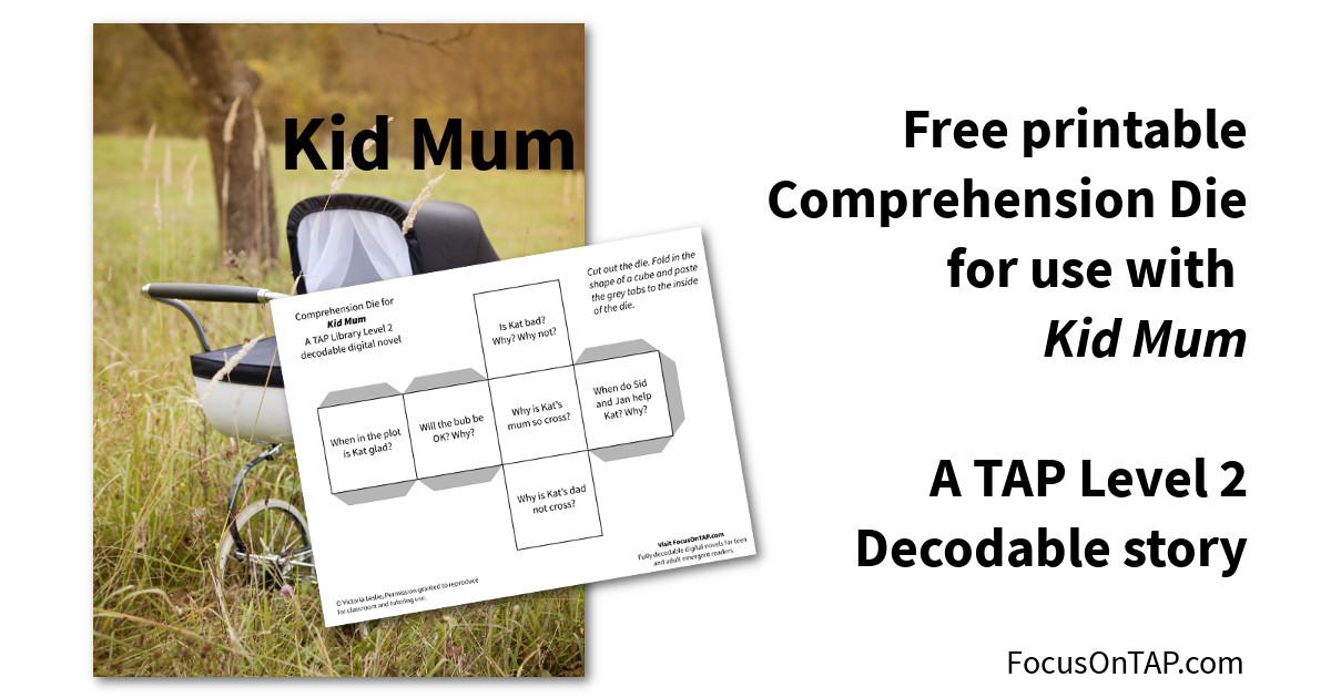 Offers comprehension die printout for Kid Mum decodable book for teenagers and adults